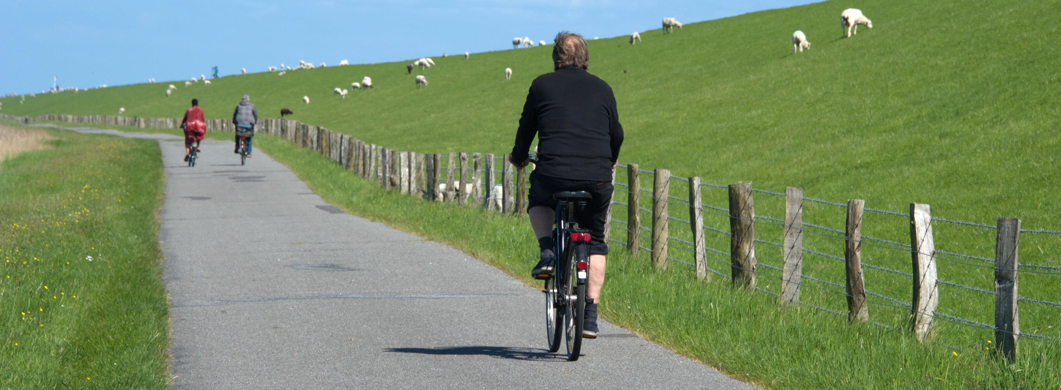 Radfahren auf Pellworm - © - Foto: Katharina Hansen-Gluschitz